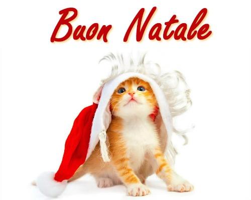 Biglietti Di Natale On Line.Biglietti Di Natale Da Inviare Per Email